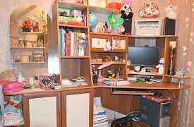 Компьютерный стол и книжная полка одного интерьере